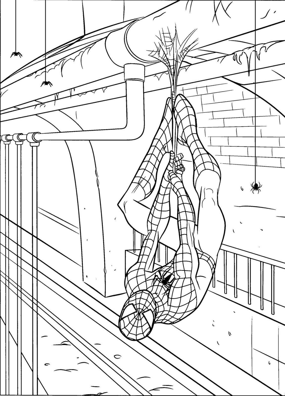 раскраски человек паук скачать и распечатать онлайн